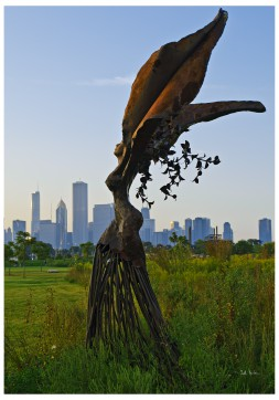 Cadillac Daphne - Northerly Island