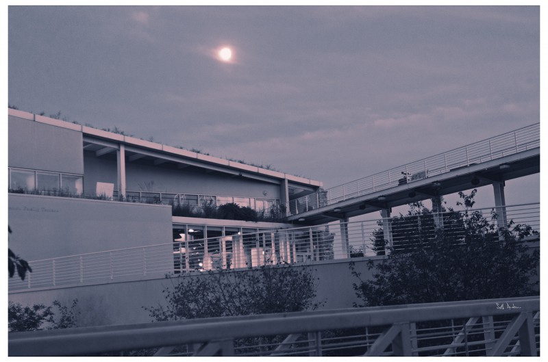 Perplexed By the Light Of Your Moon - Tetenal Copper