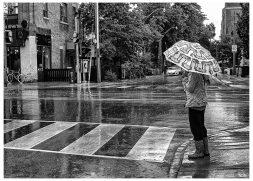 Laughter Like Rain